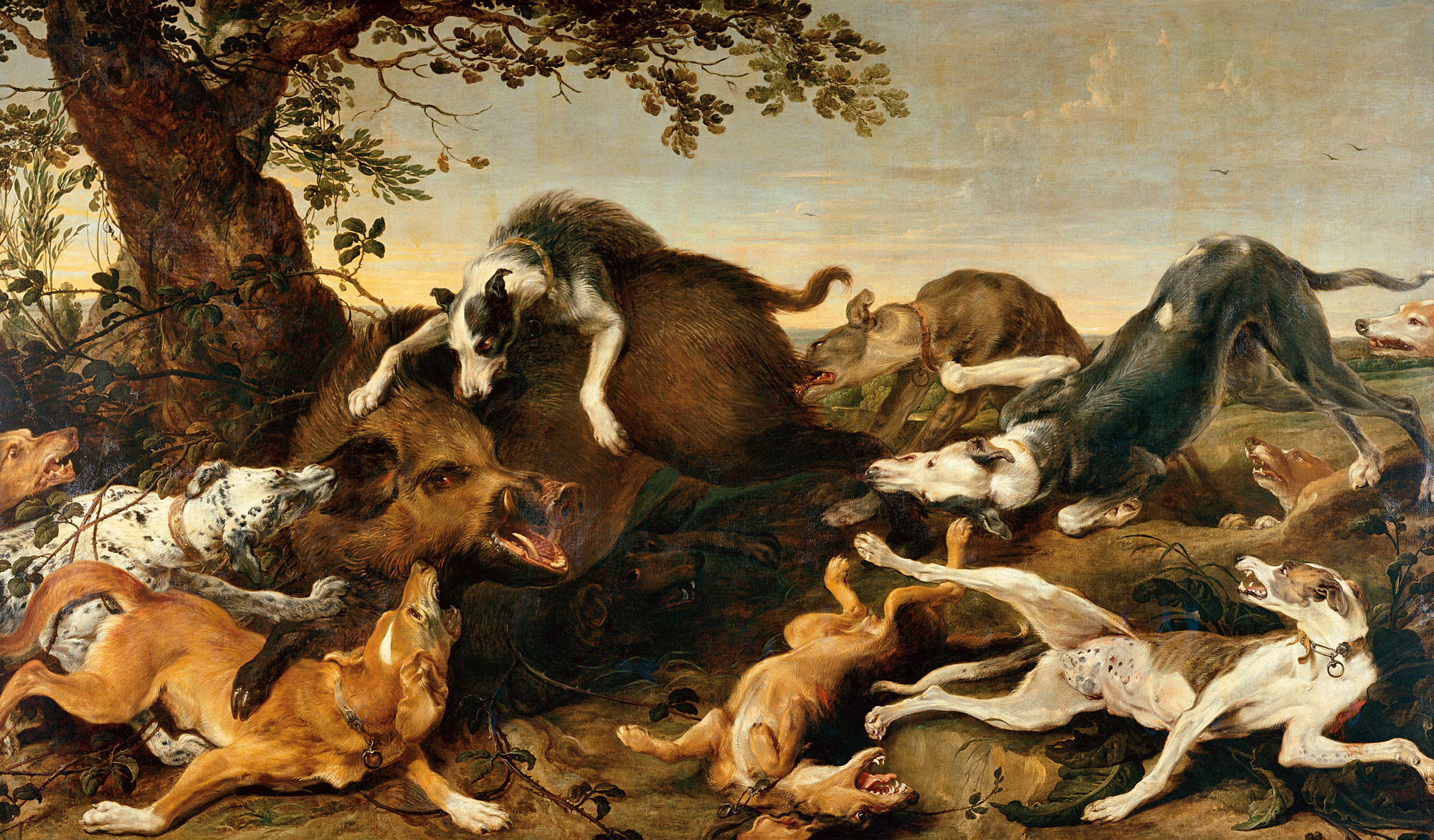 Nicolaas and Frans' world of animals – primary education